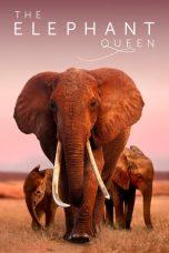 Nonton Film The Elephant Queen (2019) Terbaru
