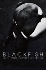 Nonton Film Blackfish (2013) Terbaru