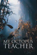 Nonton Film My Octopus Teacher (2020) Terbaru