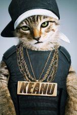 Nonton Film Keanu (2016) Terbaru