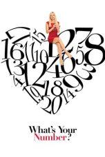 Nonton Film What's Your Number? (2011) Terbaru